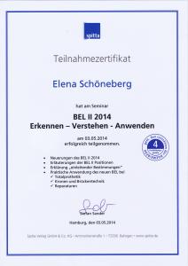 Zertifikat-Pauli-05 2